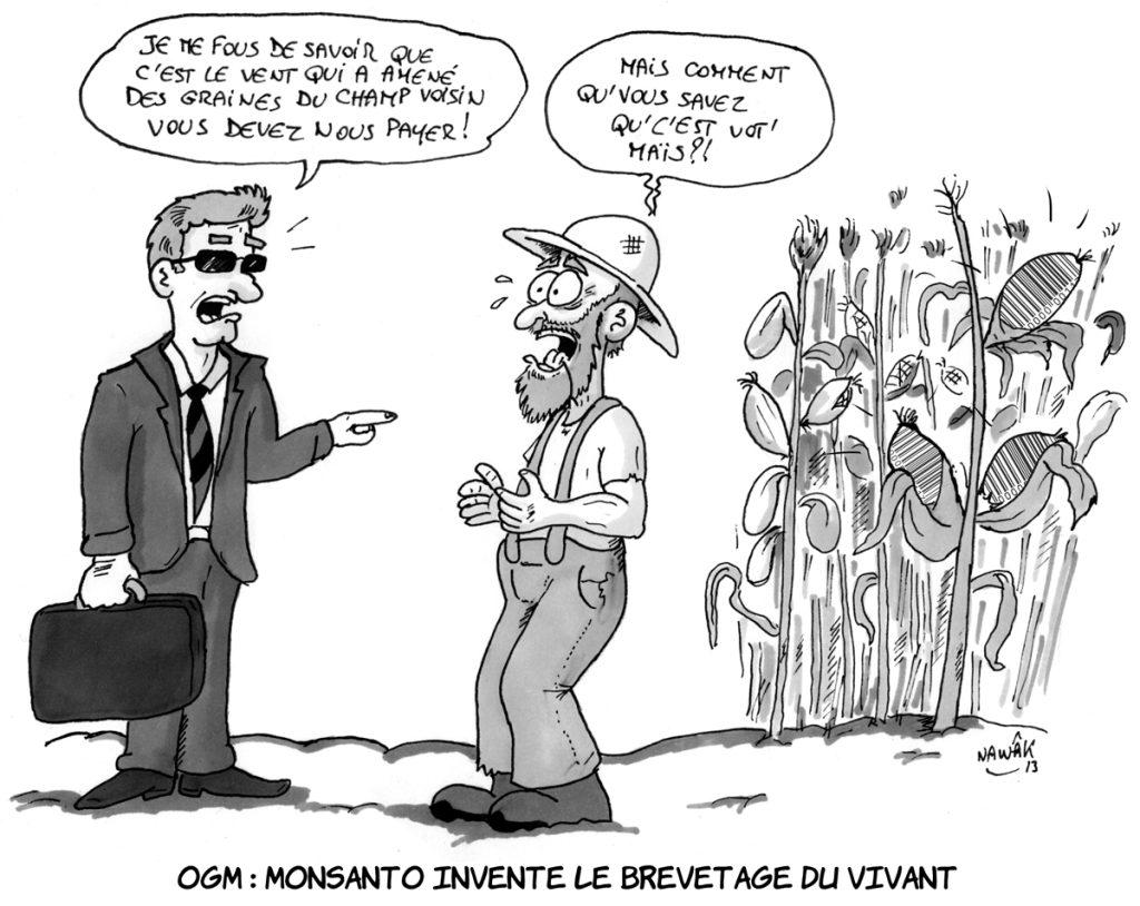 Monsanto-et-les-graines-dans-le-vent