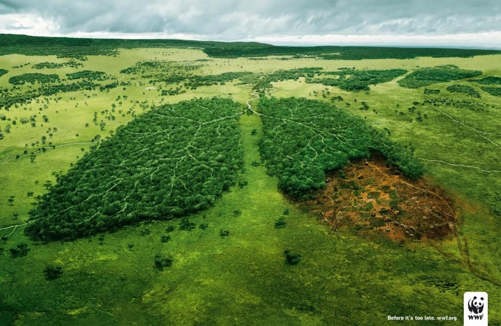 empreinte-ecologique-terre