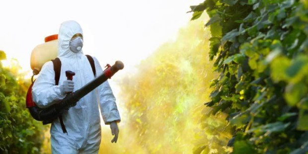 Pesticides-les-agriculteurs-souffrent-de-cancers-differents-selon-leur-activite