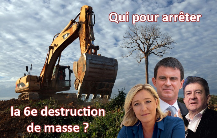 bulldozer-destruction-arbre-policien