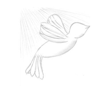 dessin oiseau blanc liberté