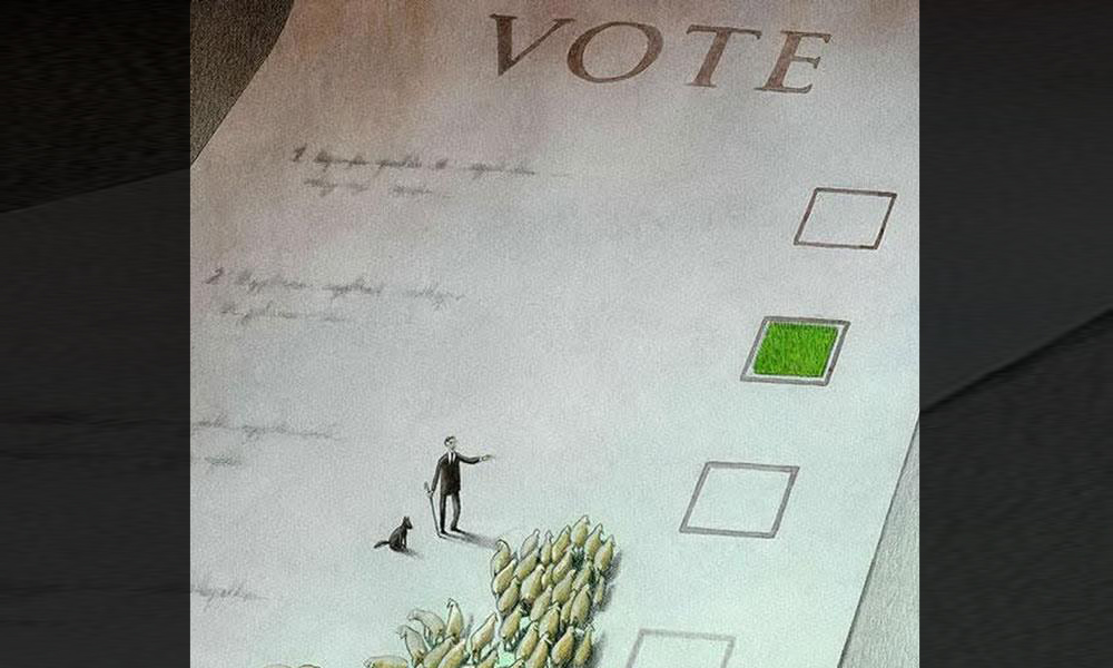 bulletin-vote-moutons