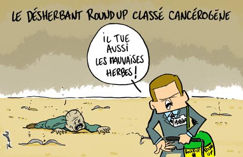 roundup-desherbant-glyphosate-cancer